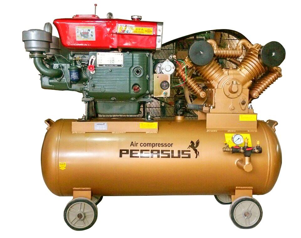 Máy nén khí Pegasus TM-V-1.05/12.5-500L DIESEL - GHP